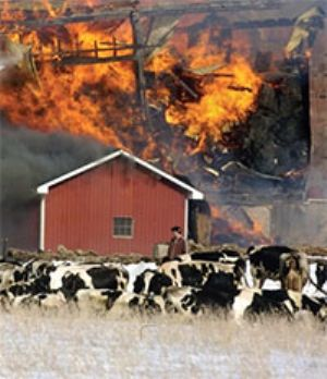 Reducing the Risk of Fire on your Farm